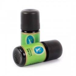 Nuka -Organik Servi Yağı 5 ml